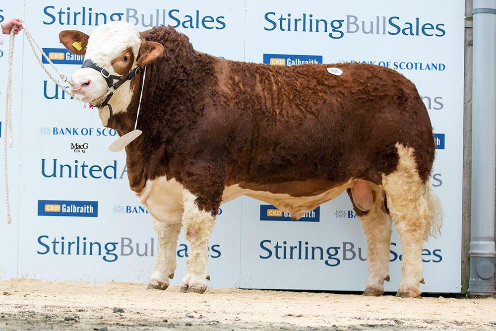 153-Kilbride-Farm-Esquire-8500gns-9886.jpg