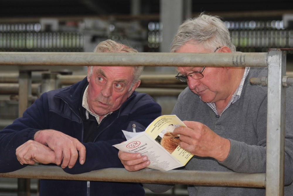 Keeping an eye on Simmental trade at Ballymena are County Down farmers Hugh Dickson and Alex Douglas. Picture: Julie Hazelton