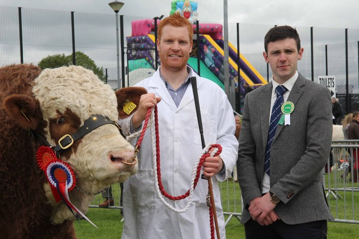 Male and supreme overall champion was Dermotstown Delboy shown by Christopher Weatherup, Ballyclare. Adding his congratulations is judge Andrew Clarke, Tynan.