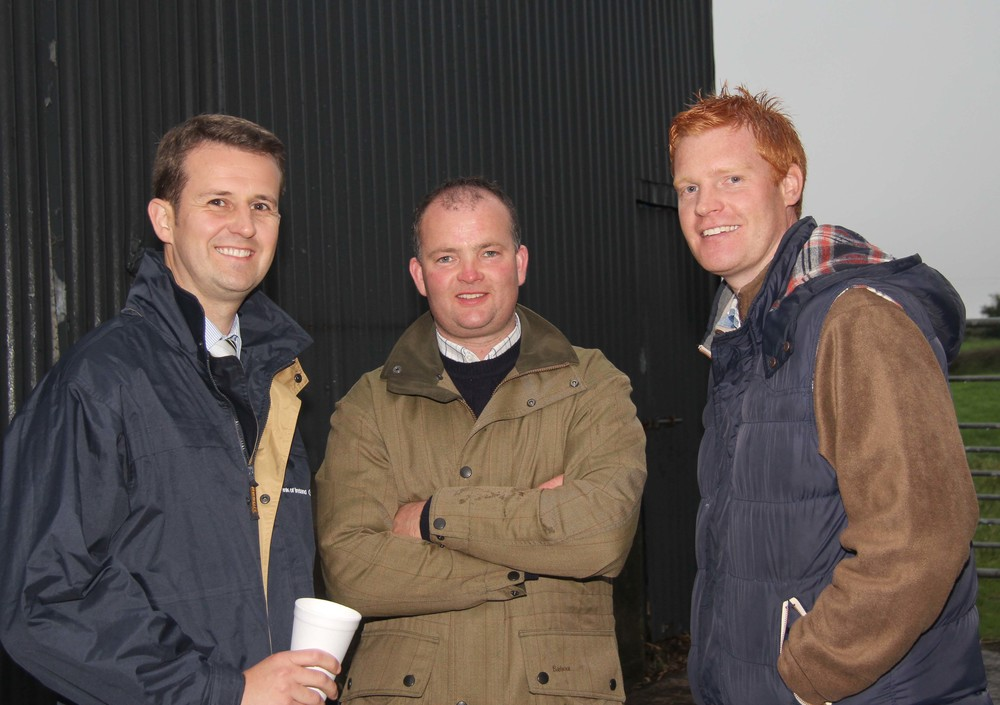 Host Christopher Weatherup, Ballyclare, chats to William Thompson, Bank of Ireland; and Alan Wallace, Antrim, at the NI Simmental Club's annual stockjudging competition.