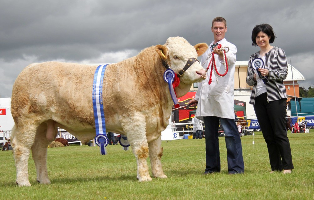 Paul McDonald, Tempo, exhibited the male and reserve supreme Simmental champion Coolcran Fiesta. Adding her congratulations is Ann McCrory, Danske Bank, sponsor