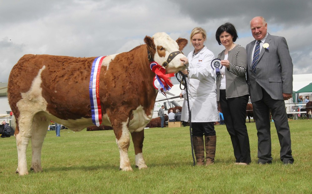 The female and supreme overall Simmental champion at Omagh Show was Scribby Farms Exquisiter shown by Andrea Nelson, Rosslea. Included are Ann McCrory, Danske Bank, sponsor; and judge Harold Stubbs, Lisnaskea.