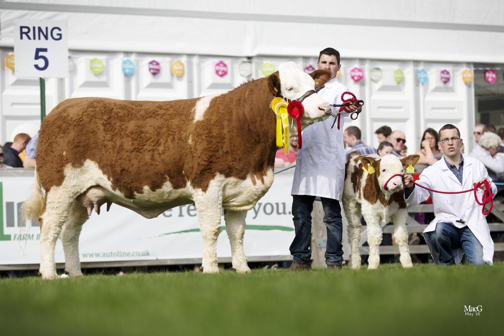 164-Kilbride-Farm-Eunice-8511.jpg