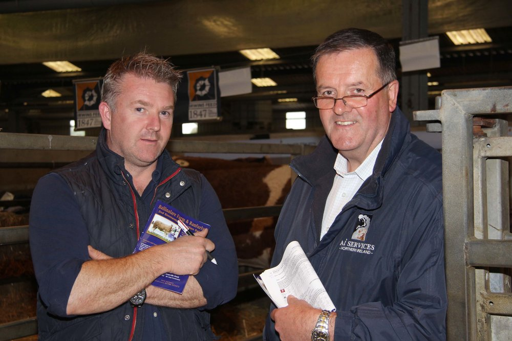 Barry Chambers, Portadown, chats to British Simmental Cattle Society vice president Robin Boyd, Portglenone, at the 2nd production sale from the Ballinalare Farm and Ranfurly herds.