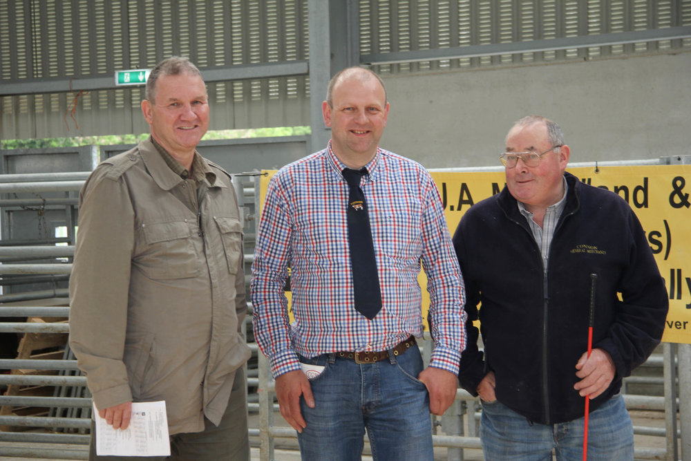 NI Simmental Cattle Breeders' Club chairman Matthew Cunning, centre, is pictured at the club's evening show and sale in Ballymena Mart with sponsors Mike Frazer, Edenvale Herd; and Jonny Connon from Connon's General Merchants.