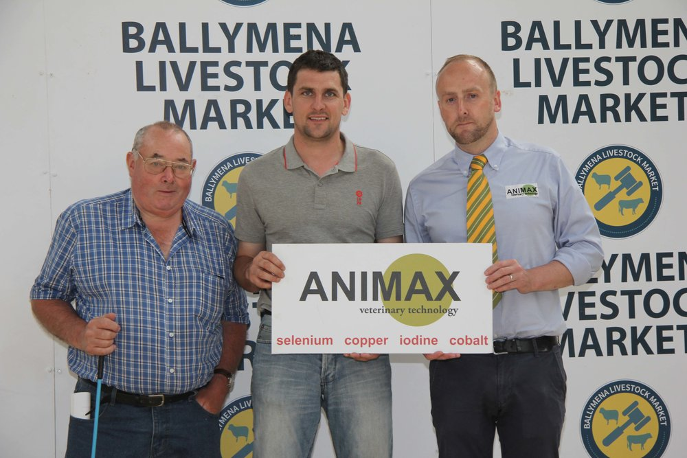 NI Simmental Cattle Breeders' Club chairman Conrad Fegan, centre, is pictured with sponsors of the evening show and salein Ballymena, John Connon, Connon General Merchants; and Neill Acheson, Animax.