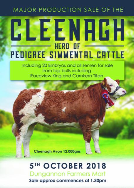 Cleenagh Leaflet 2.jpeg