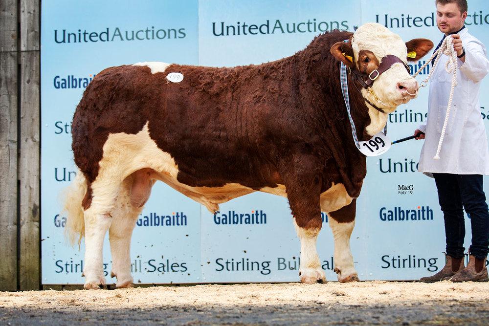 199-Kilbride-Farm-Ibraham-6000gns-6496.jpg
