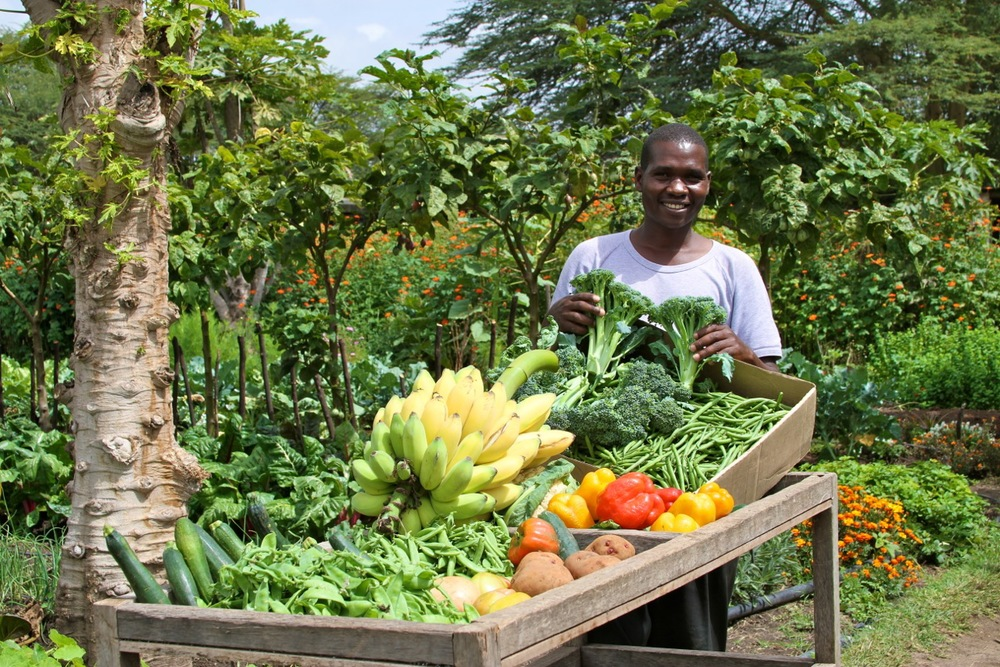 Organic Produce at Sirikoi, Kenya