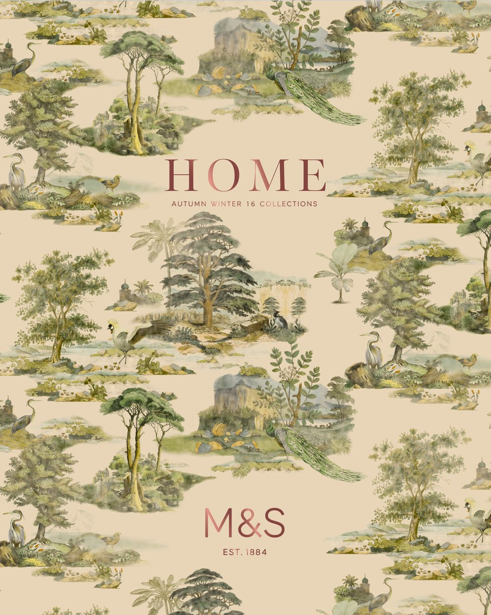 home1.jpg