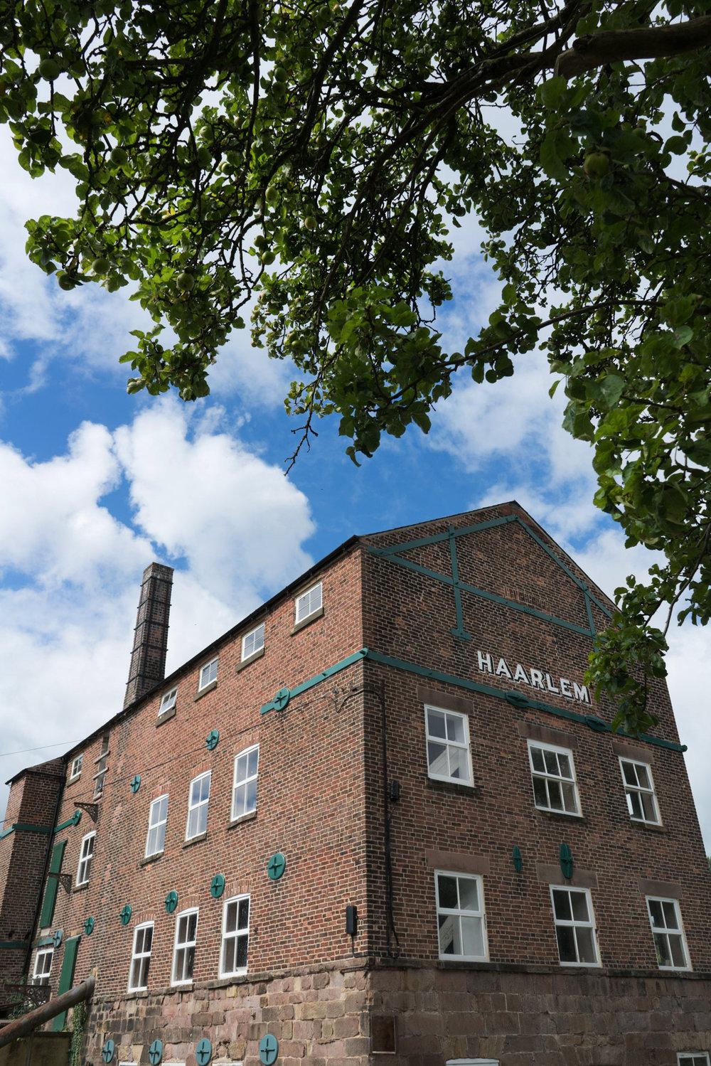 Haarlem Mill - Curiousa & Curiousa