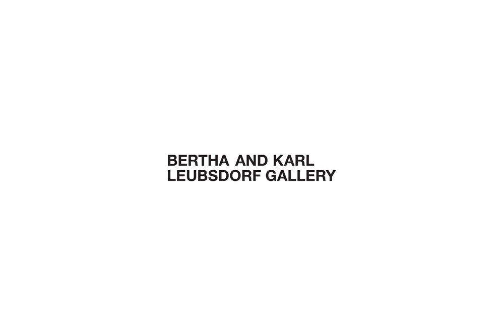 Bertha and Karl Leubsdorf Gallery, New York