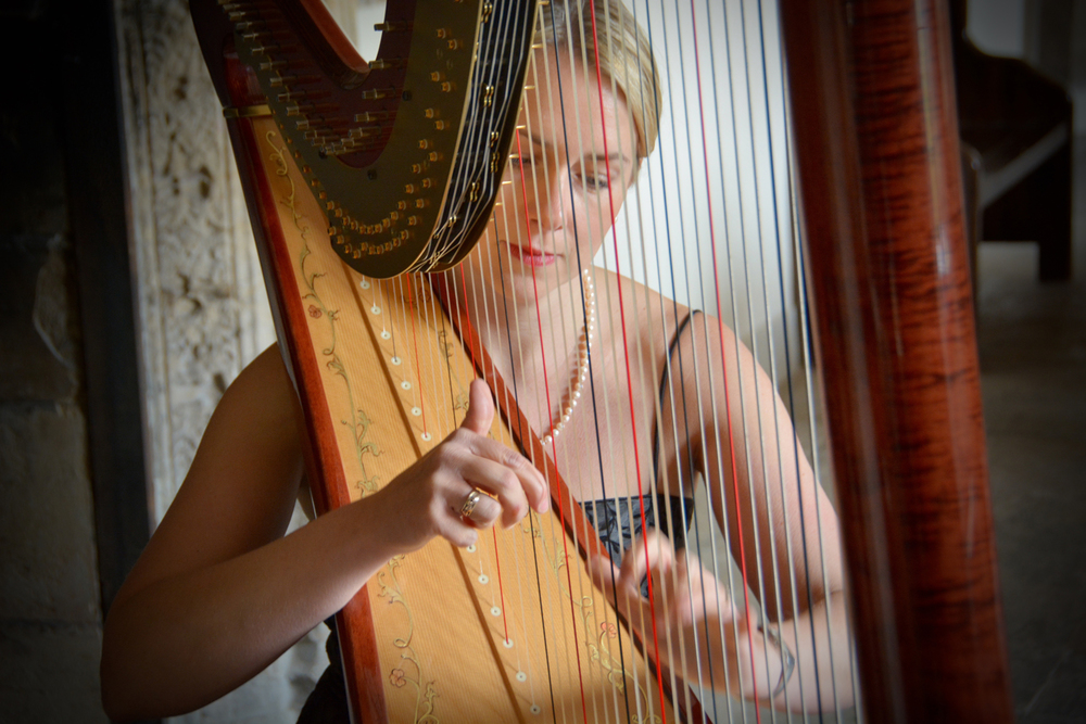 Siona Stockel Harp 3