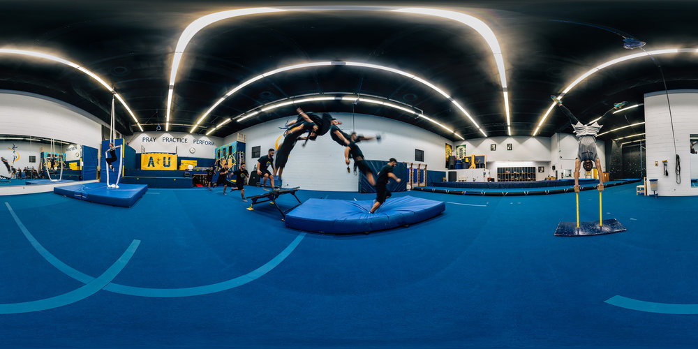 Gymnastics_sm.jpg