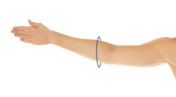 MID - LOWER ARM