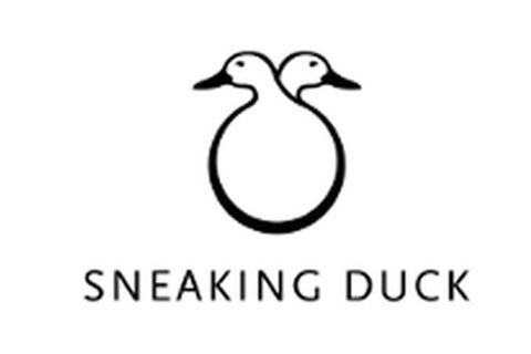 Sneaking Duck