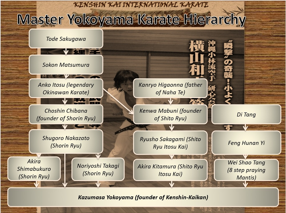 Developmental History of Kenshin-Kai (click for detail)