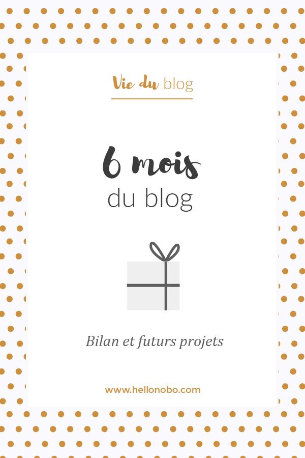 6 mois blog bilan