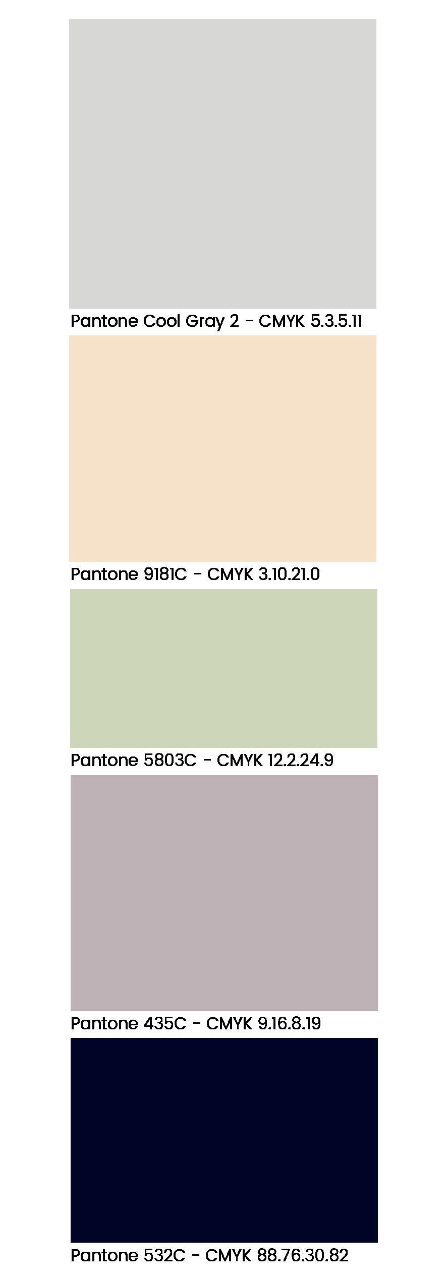 palette_6_decoration.png