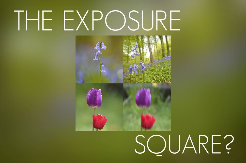The exposure square