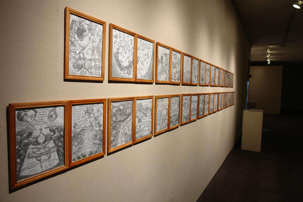 From the senior show: photos of the entire book in finished drawing form.