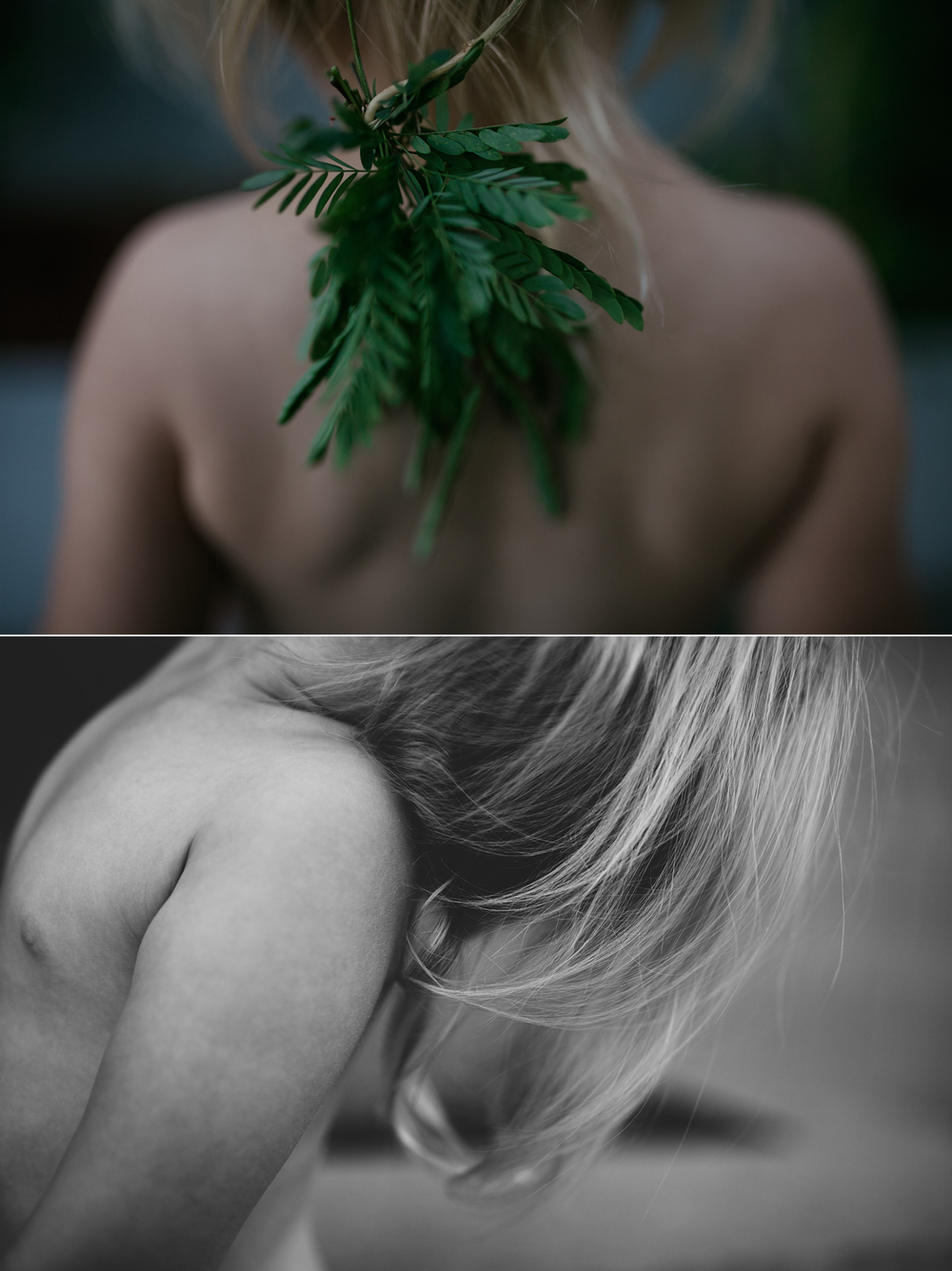 sloane plants.jpg