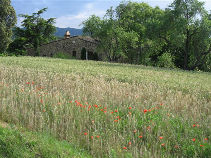 Field and stone house in Spain