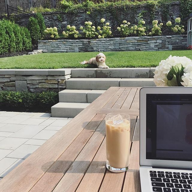 Working away outside as someone 🐶 in the distance eyes my coffee... or is it's the ice cubes she's after!?