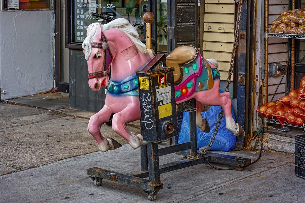 stock_horse.jpg