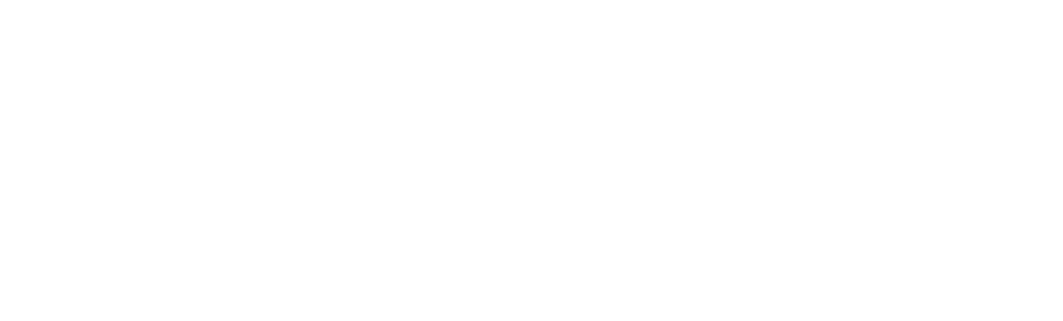 Project Wildness