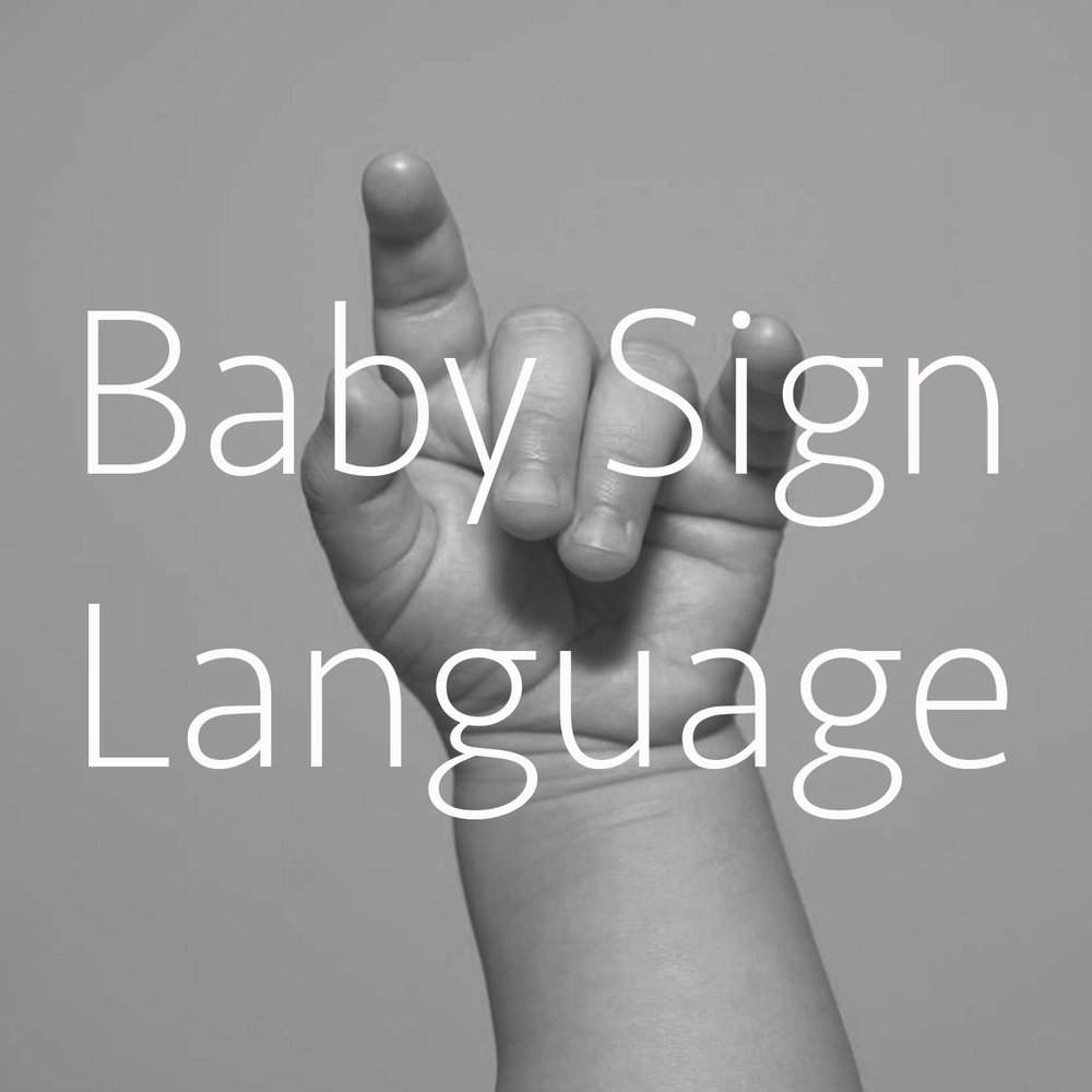 Baby Sign Language.jpg