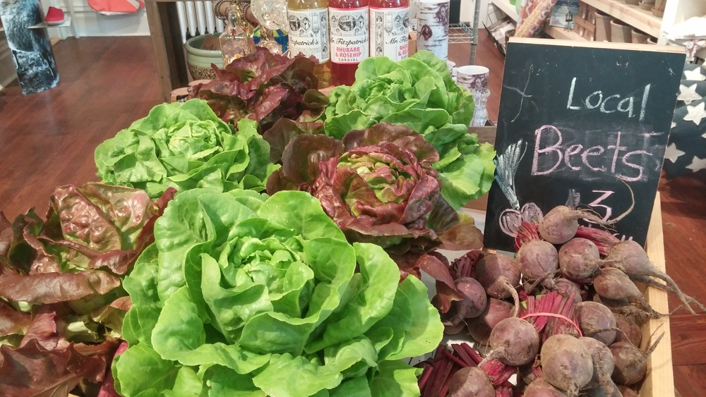 Butterhead Lettuce grown in our greenhouses and local beets.