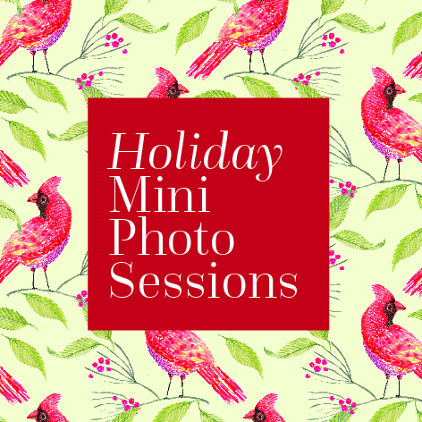 holiday-mini-session-100.jpg