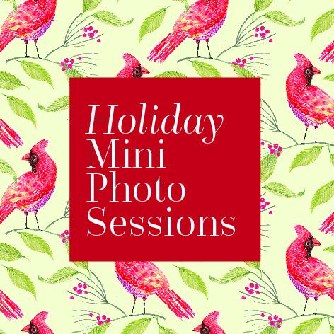 holiday-mini-session-100.jpg