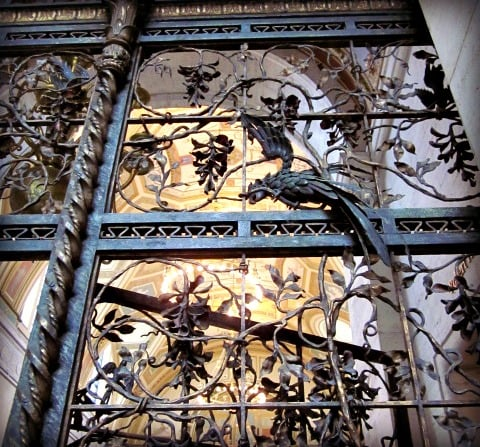 wisteria gate.jpg
