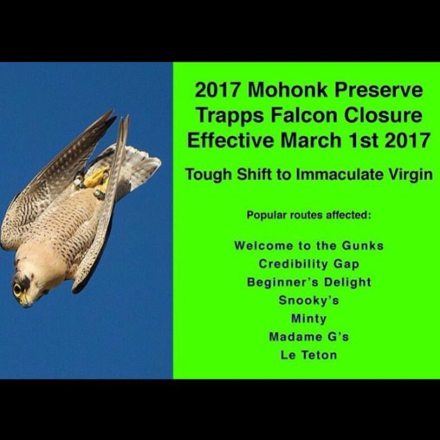 Just saw this posted on Facebook, figured we should probably share it along to make sure as many folks see it as possible. Early season in the Gunks looks great this year, but respect the birds!