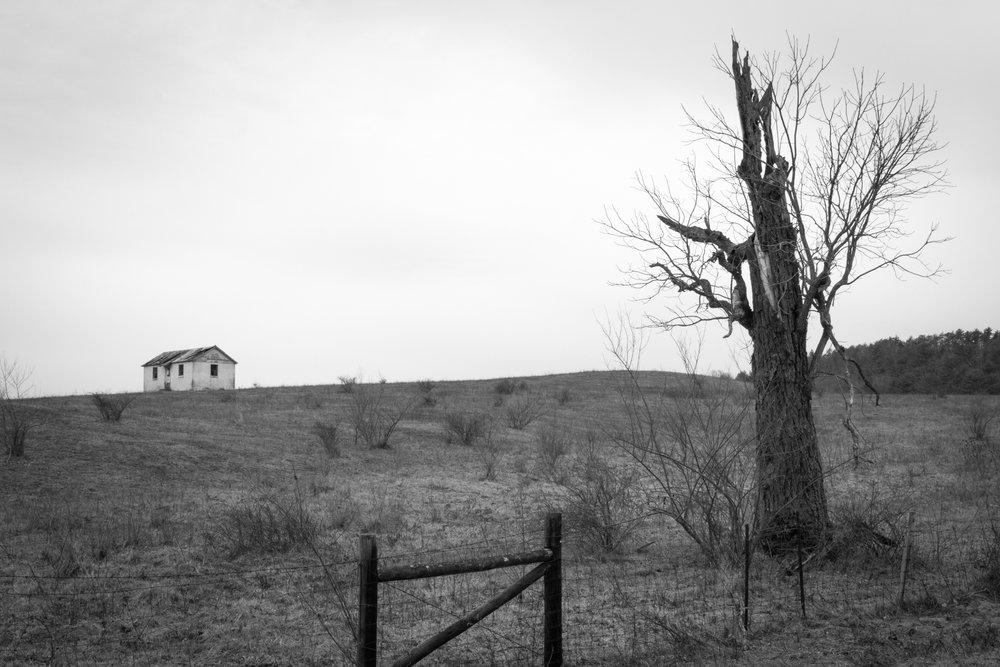 Hilltop Cottage.jpg