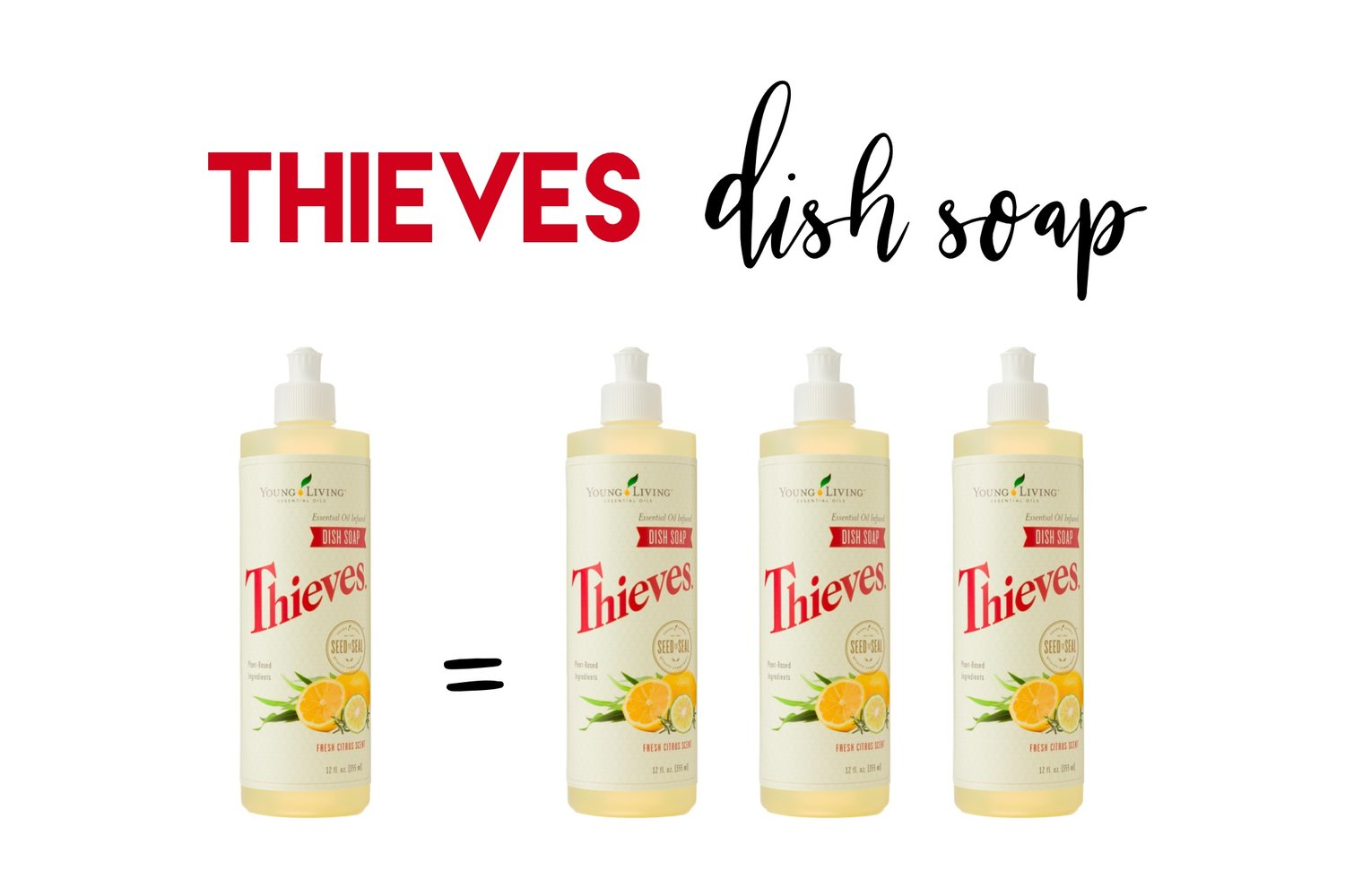 How To Triple Your Thieves Dish Soap! — Leslie Burris