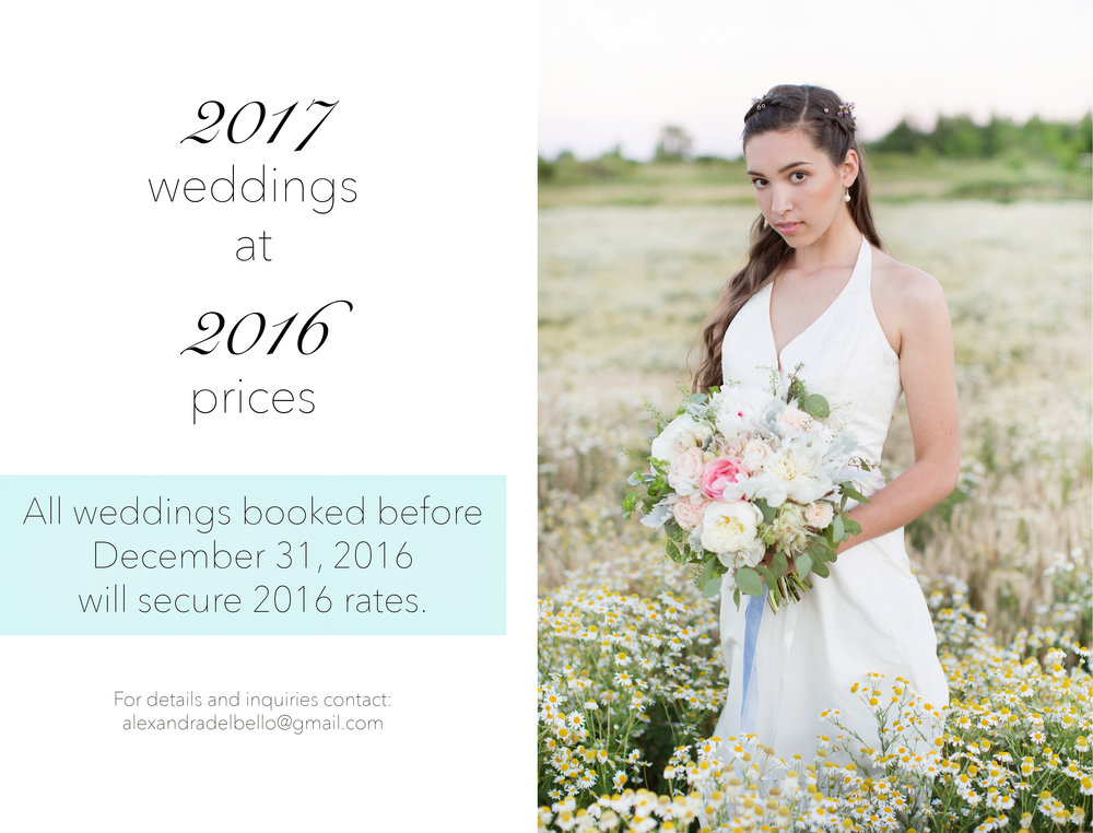 alexandradelbellophotography-weddingphotography-engagementphotography-2017wedding-hamiltonontariowedding-hamiltonontarioweddingphotography-hamiltonontarioweddingphotographer-niagaraontarioweddingphotographer