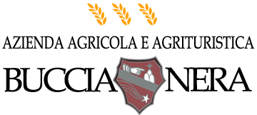 logo-BucciaNera2.png