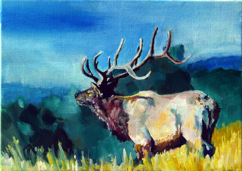 Elk_Ridge.JPG