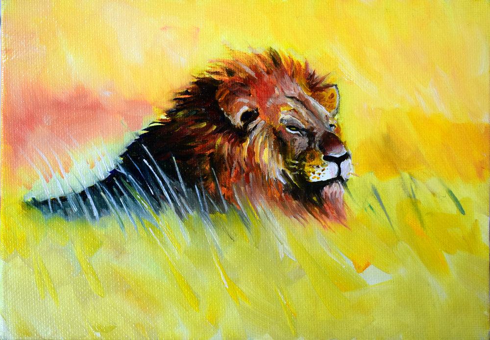 Lion_sun.jpg