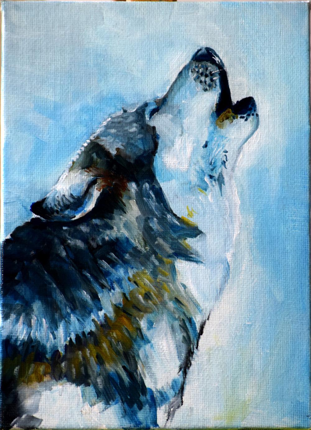 Wolf_winter.jpg