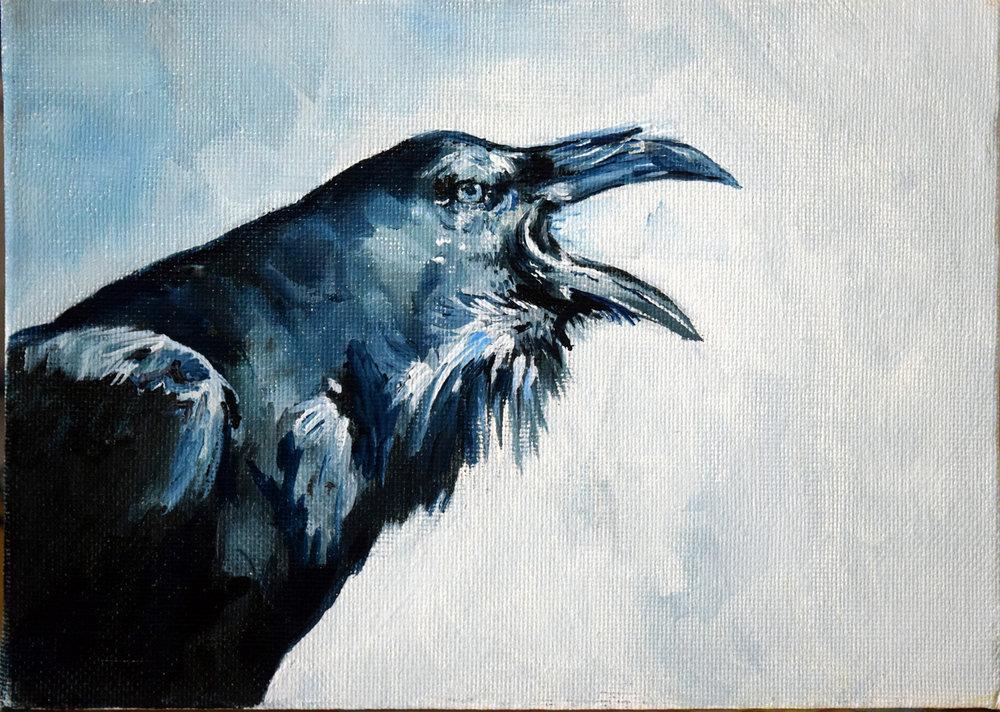 Raven_call.JPG