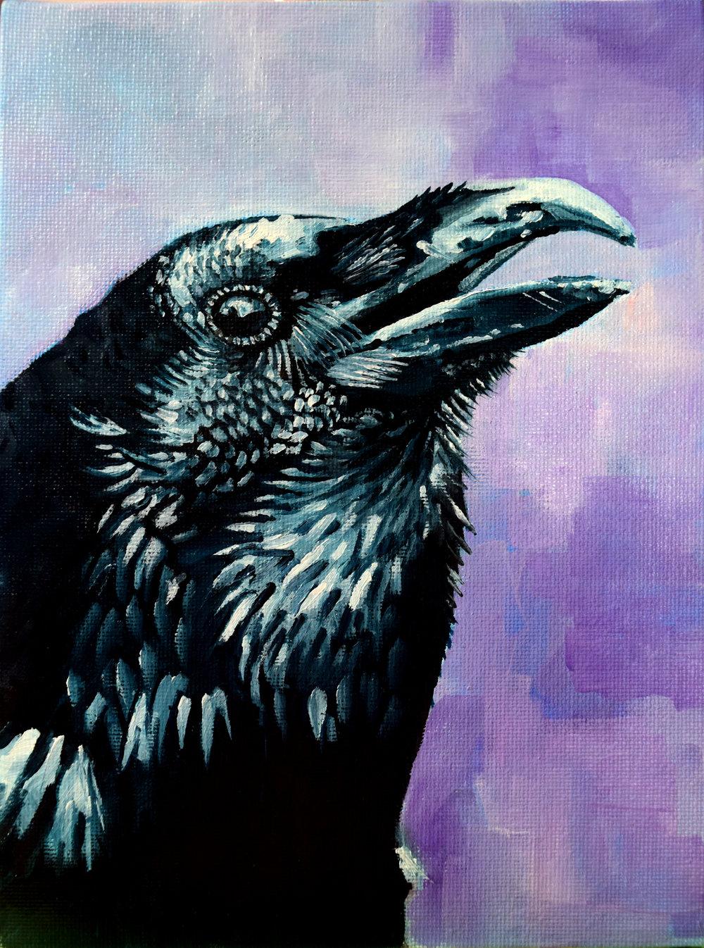 Raven_watching.jpg