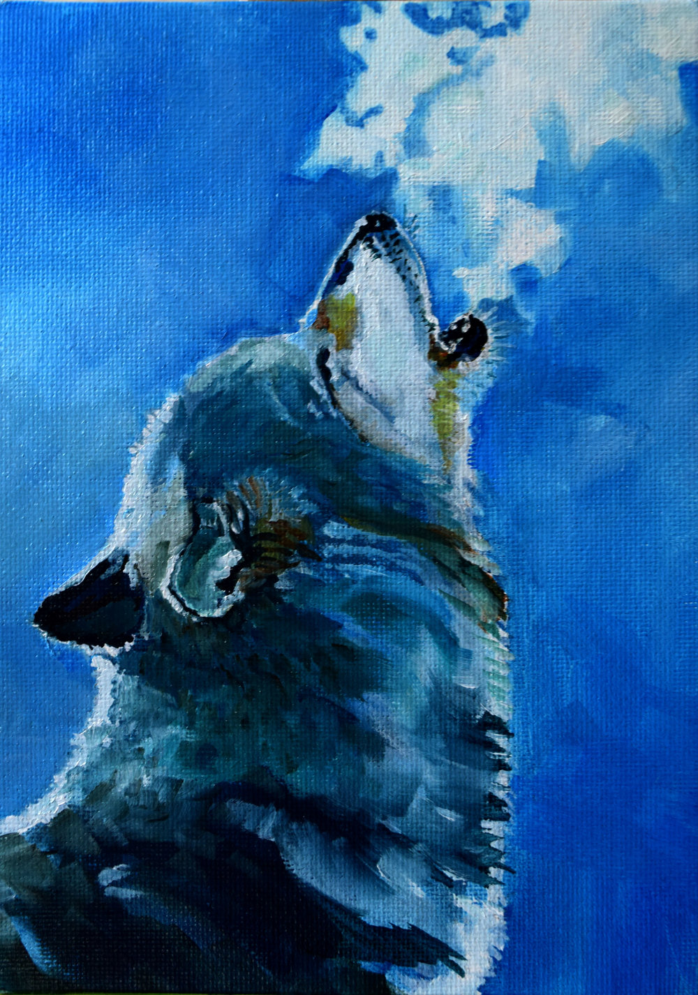Wolf_chill.jpg