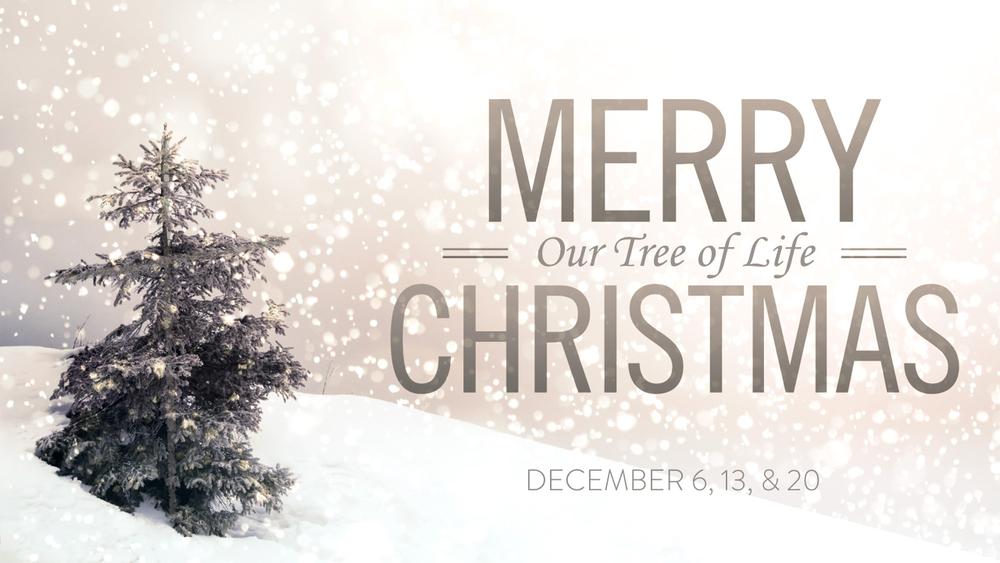 The Christmas Tree of Life - Part 2.001.jpeg