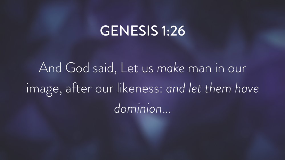 Genesis: In the Beginning...Grace - Part 1.017.png