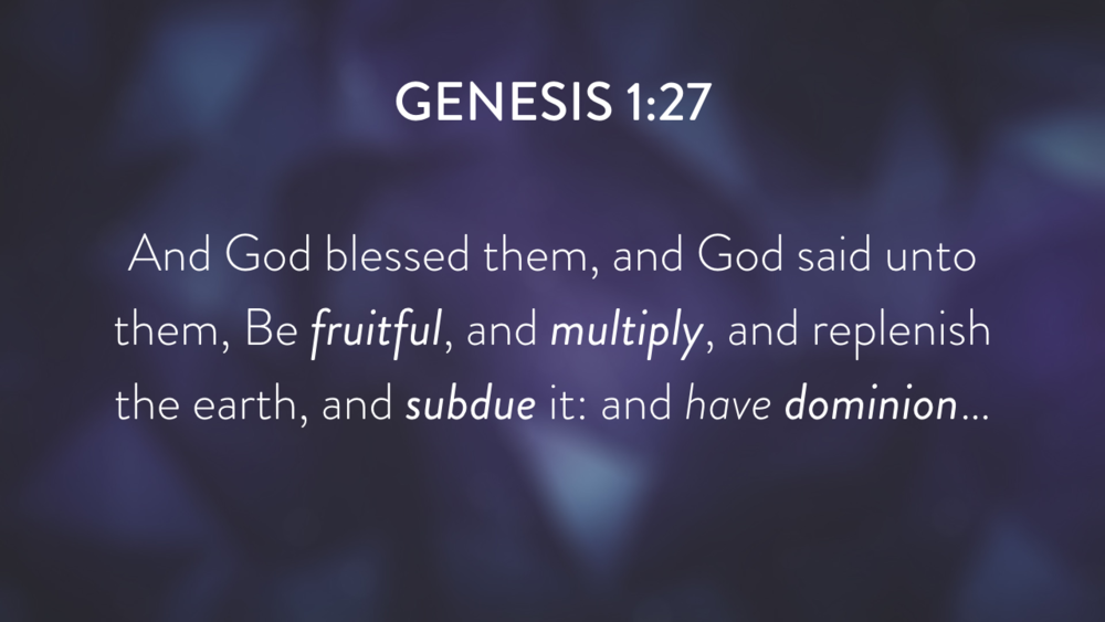Genesis: In the Beginning...Grace - Part 1.018.png