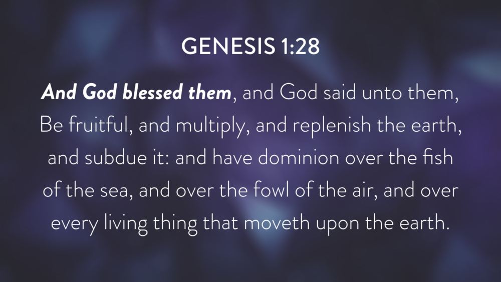 Genesis: In the Beginning...Grace - Part 2.010.png